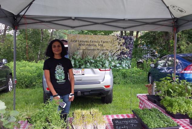 First Leaves Family Farm LLC Whitinsvelle, MA